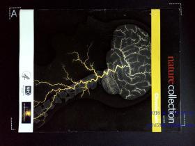 Nature COLLECTION CHRONIC PAIN 2013/04 英文自然医学杂志