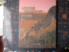 生命的力量-—非洲野生动物摄影集【未拆封】