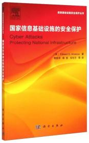 国家信息基础设施的安全保护