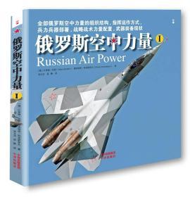 俄罗斯空中力量(Ⅰ、Ⅱ)