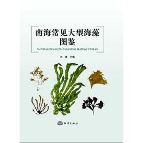 南海常见大型海藻图鉴1I22a