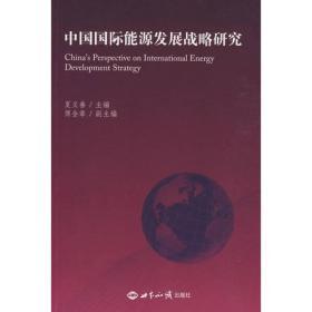 中国国际能源发展战略研究