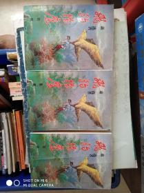 飞豹扬鹰【全三册竖版】