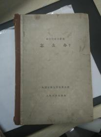 怎么办(精装古典网格本,1959年 一版一印)