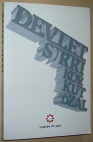 土耳其语原版书 Devlet Sırrı; Perde Arkasında Derin Devlet