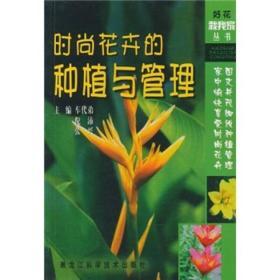 时尚花卉的种植与管理
