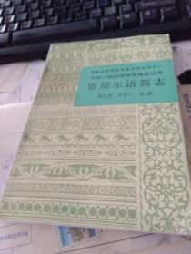中国少数民族语言简志丛书 塔塔尔语简志