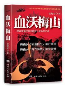 血沃梅山 贺辉军 湖南文艺出版社 9787540472696