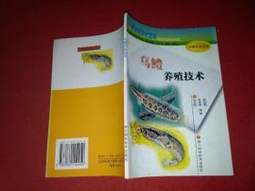 乌鳢养殖技术