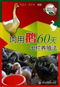 肉用鹅60天出栏养殖法