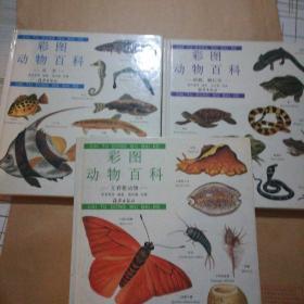 彩图动物百科:无脊椎动物,两栖 爬行类,鱼类【3本合售】