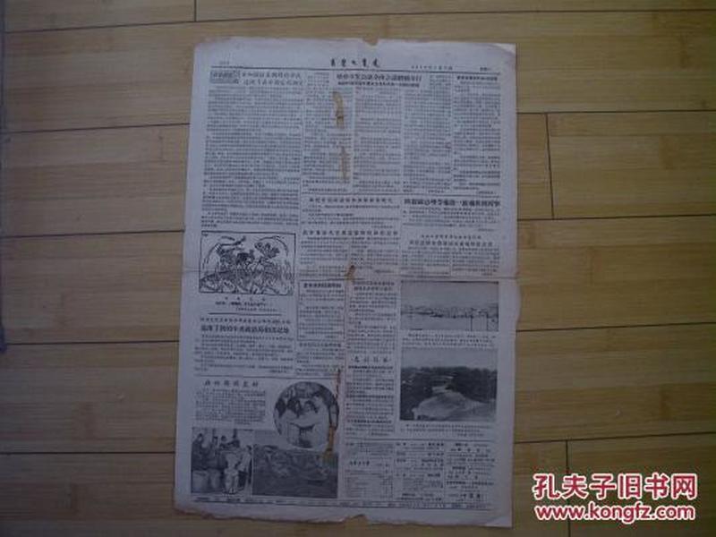 内蒙古日报  3 、4版  1956年6月6日  货号3