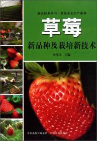 果品安全生产系列·强农技术丛书:草莓新品种及栽培新技术