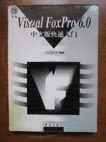 Visual FoxPro 6.0中文版快速入门(书脊下角有油迹,品如图,余较好)