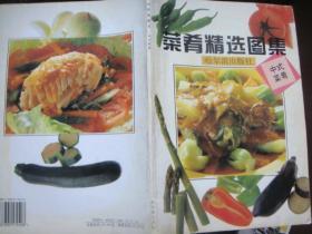 菜肴精选图集--中式菜肴