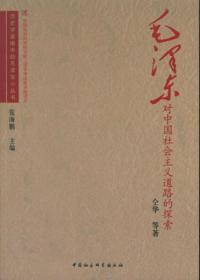毛泽东对中国社会主义道路的探索/历史学者眼中的毛泽东小丛书