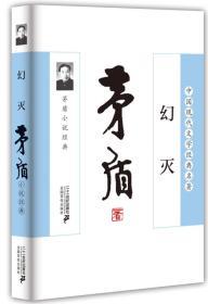 中国现代文学经典名著——幻灭:矛盾小说经典
