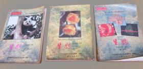 老课本:九年级义务教育三年制初级中学教科书 生物【全套3册 90年代】