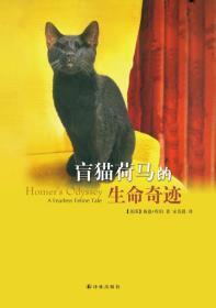 盲猫荷马的生命奇迹