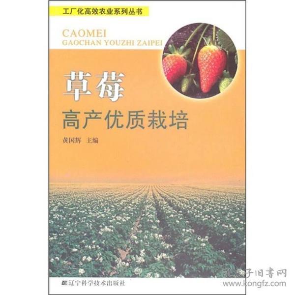 草莓高產優質栽培