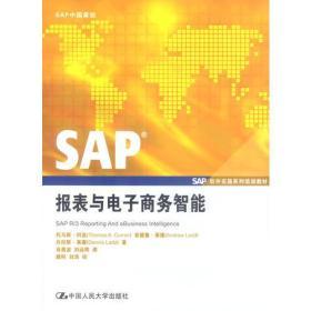 SAP报表与电子商务智能
