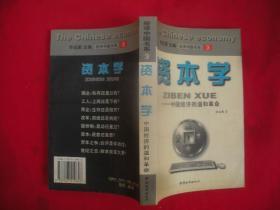 资本学:中国经济的温和革命