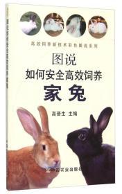 图说如何安全高效饲养家兔