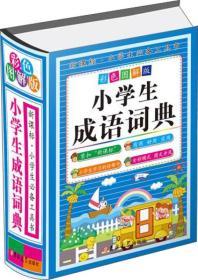 彩色图解版 小学生成语词典  B1