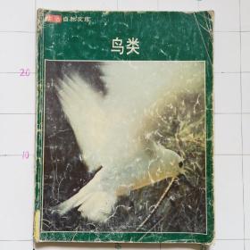 生活自然文库鸟类