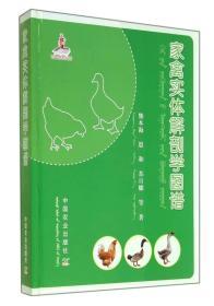 家禽实体解剖学图谱