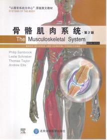 骨骼肌肉系统