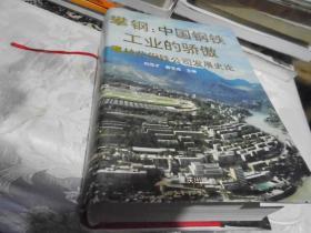 攀钢:中国钢铁工业的骄傲:攀枝花钢铁公司发展史论