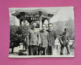 老照片(磨山植物园)