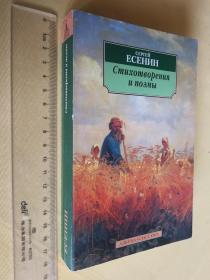 俄文原版 叶赛宁诗集 Сергей Есенин