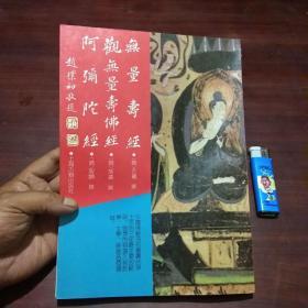 佛学名著丛刊:无量寿经/观无量寿经/阿弥陀经 (16开本)