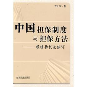 中国担保制度与担保方法