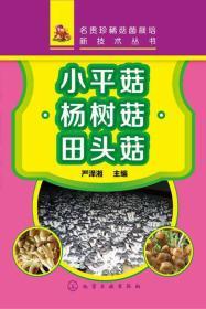 小平菇·杨树菇·田头菇