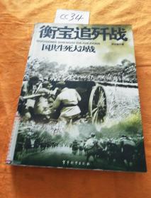 国共生死大决战:衡宝追歼战