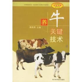 养牛关键技术