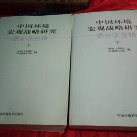 中国环境宏观战略研究综合报告卷(上下)