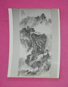 老照片(画2.)