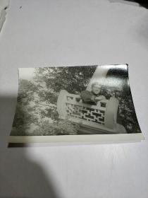 黑白老照片:一人留影照,背景凉亭