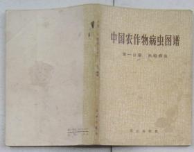 中国农作物病虫图谱--第一分册水稻病虫