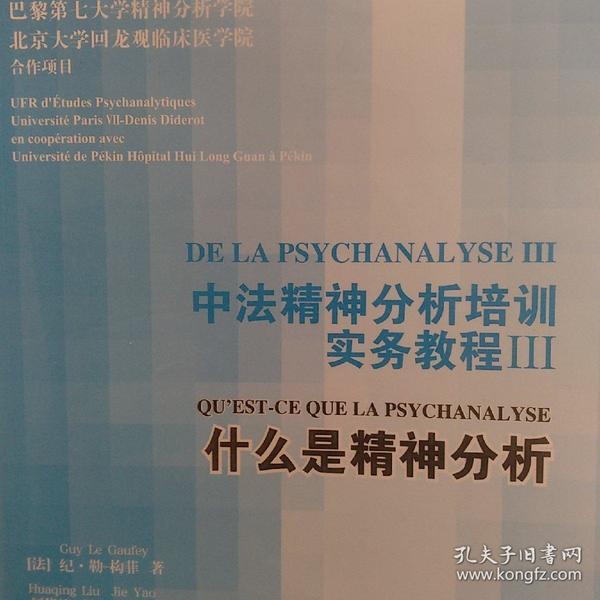 中法精神分析培训实务教程III:什么是精神分析