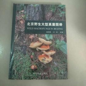 北京野生大型真菌图册【全新未开封】
