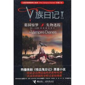 V族日记:墓园惊梦·失物迷踪