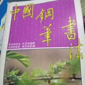 中国钢笔书法  19期   1989  1