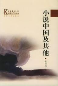 小说中国及其他