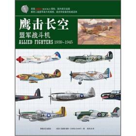 鹰击长空:盟军战斗机