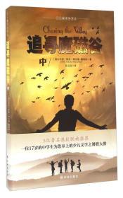 《追寻魔磁谷》中册